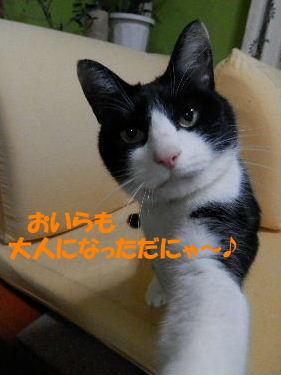 2014_03200018.jpg