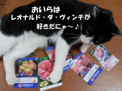 2014_03270015.jpg