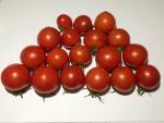 トマト140814