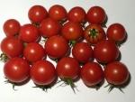 トマト140828