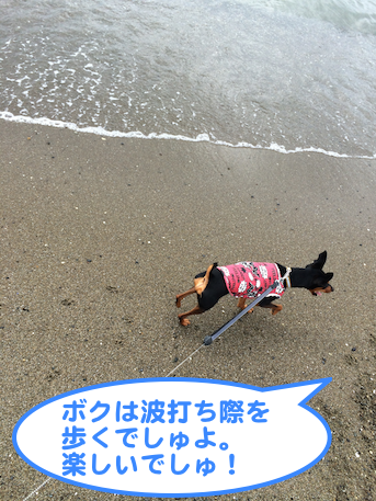 20140831-1.png