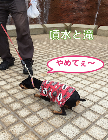 20140831-3.png