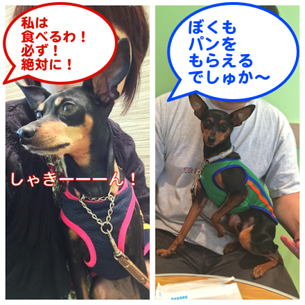 20140917-1.png