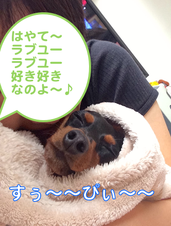20140917-4.png