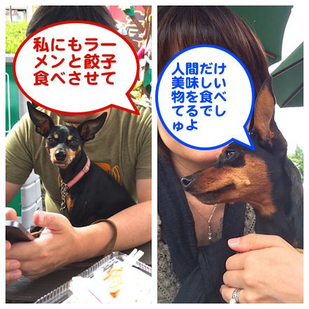 20140925-2.png