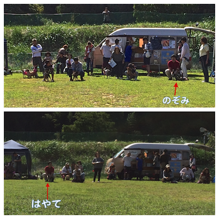 20140929-1.png