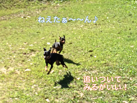 20140929-4.png