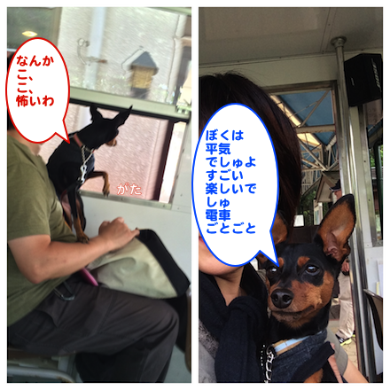 20150925-3.png