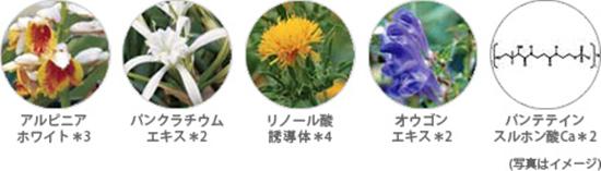 徹底美白をサポートする5種類の美容成分