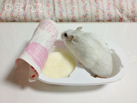 ぱんな_餅2