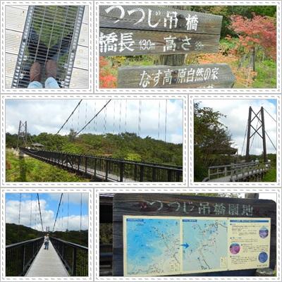 つつじ吊り橋_2