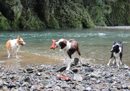9月の川遊び1