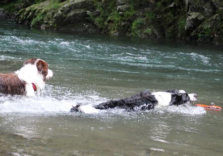 9月の川遊び4