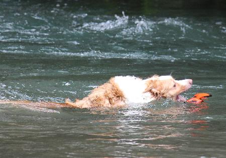9月の川遊び5