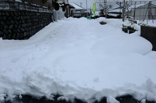 yuki201402002.jpg