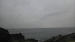 初めて訪れた三浦半島の磯