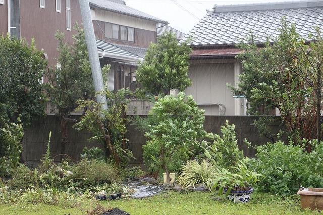 台風19号納屋の西側 26.10.13