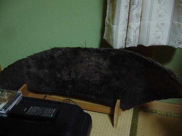鯨のひげ 26.10.9