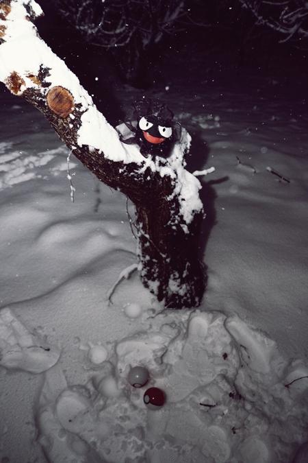 雪ゴース1うp