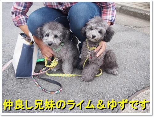 20140829_003.jpg