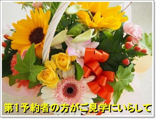 20140903_019.jpg