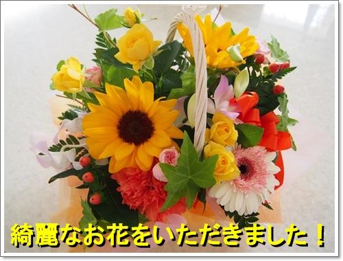 20140903_027.jpg