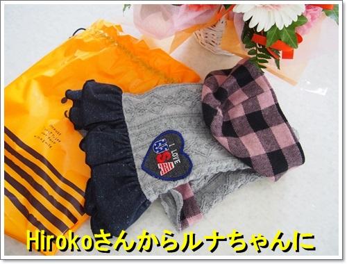 20140905_006.jpg