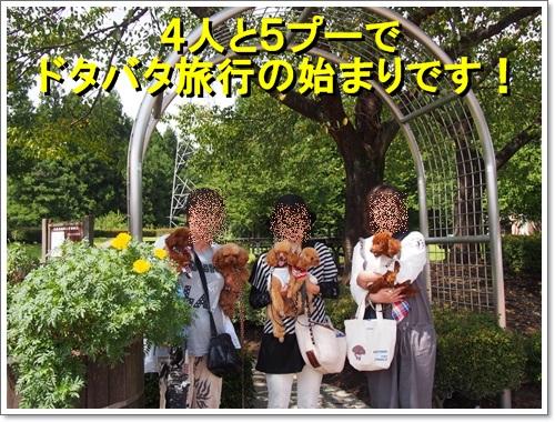 20140906_011.jpg