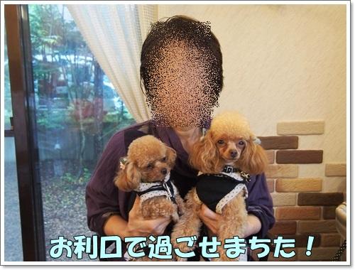 20140907_174.jpg