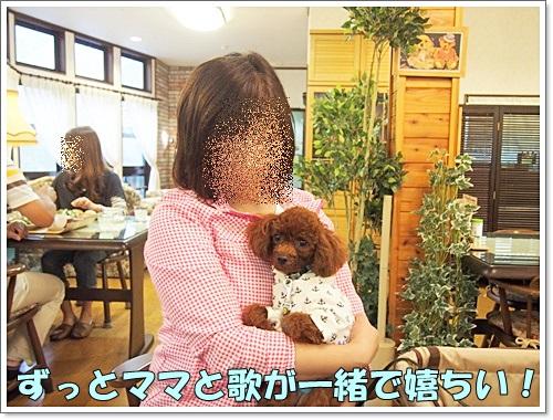 20140907_179.jpg