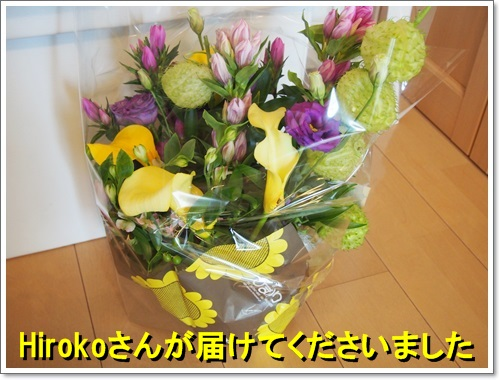 20140911_001.jpg