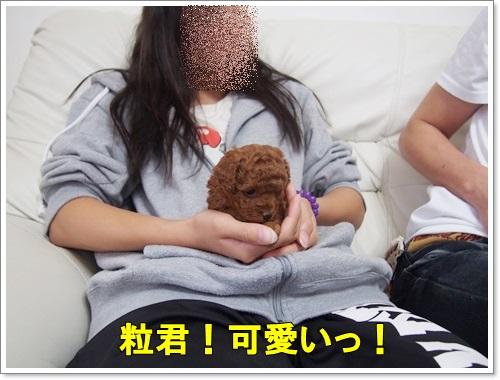 20140921_004.jpg