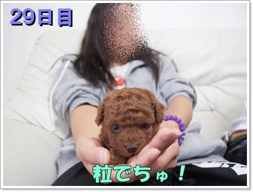 20140921_008.jpg