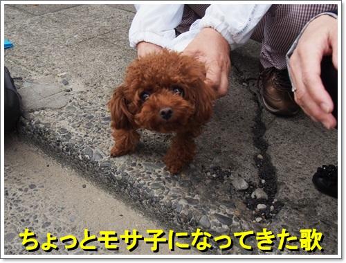 20141012_028.jpg