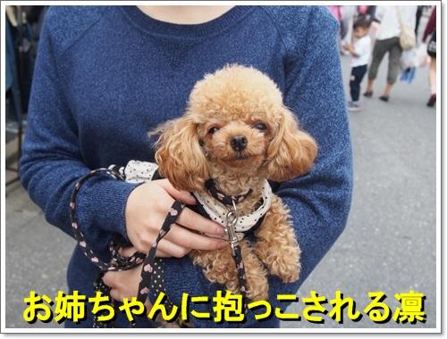 20141012_050.jpg