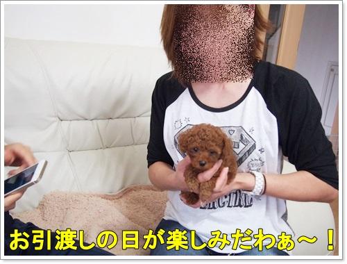 20141012_115.jpg