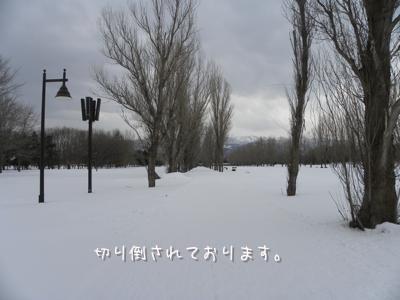 DSCN2754.jpg