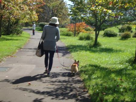 Y公園 うららママと杏