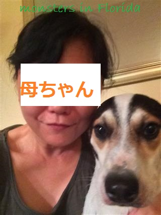 2014-05-262067 (26) (Mobile)