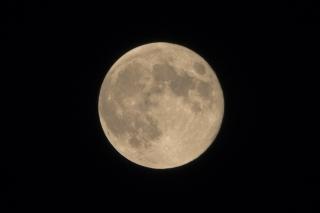月が見えたっ!