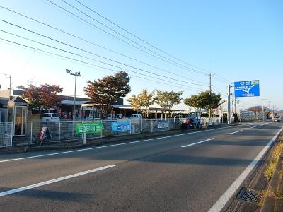 森川商店園芸部 002