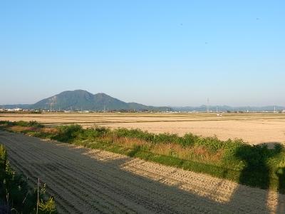 森川商店園芸部 001