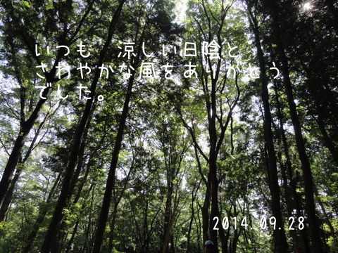 DSC04103-1.jpg