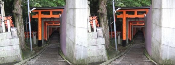 伏見稲荷大社 一ノ峰(交差法)