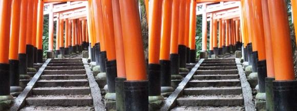 伏見稲荷大社 お山巡り⑧(平行法)