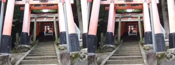 伏見稲荷大社 荒神峯(交差法)