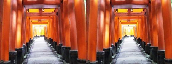 伏見稲荷大社 お山巡り⑦(平行法)