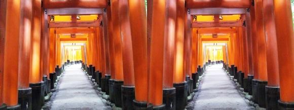 伏見稲荷大社 お山巡り⑦(交差法)