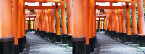 伏見稲荷大社 お山巡り⑤(交差法)