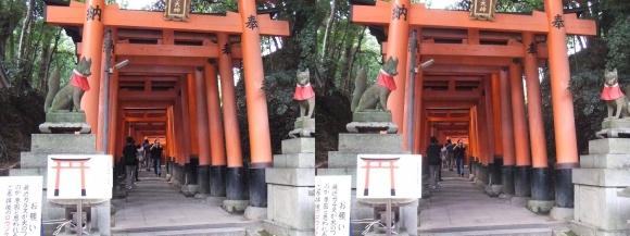 伏見稲荷大社 お山巡り①(交差法)